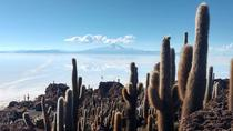 Private Tour To Uyuni Salt Flats with pick up from Luna Salada Hotel, Uyuni, Private Sightseeing...