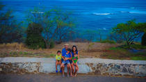 7-15 People Oahu Tour - Beautiful Beaches Fun and History Drone Tours, Oahu, Nature & Wildlife