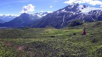 Seward Wilderness Hiking, Seward, Hiking & Camping
