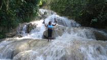 Ocho Rios Highlights Tour From Kingston, Kingston, Day Trips