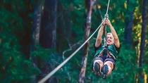40-Minute Nanaimo Zipline Adventure, Nanaimo, Ziplines
