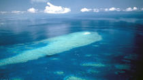 Great Barrier Reef Scenic Flight from Cairns Including Green Island, Oyster Reef, and Heart Reef, ...