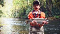 Guided Fly Fishing Trips in Western North Carolina, Carolina del Norte
