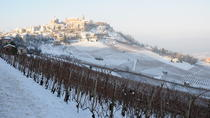 From Turin: Full day Langhe Region with its Colors and Flavors, トリノ