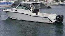 33 Ft, Boston Whaler, Cozumel, Cultural Tours