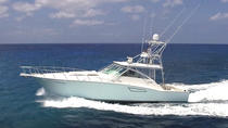 Cozumel Private Luxury Boat Day Tour, Cozumel, Day Cruises