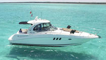 Searay Luxury Yacht in Cozumel, Cozumel, Boat Rental