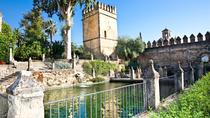 Cordoba Walking Tour with Arabian Baths Experience, Cordoba, Walking Tours