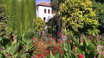 Granada Day Trip including Alhambra and Generalife Gardens from Seville