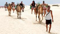 Eco Buggy and Dunas Camel Tour, Fuerteventura