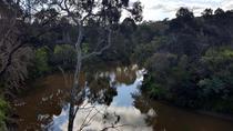 Melbourne Walking Tour by the Yarra River, Melbourne, Walking Tours