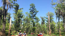 Honey Island Kayak Swamp Tour, New Orleans, Kayaking & Canoeing