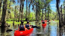 Manchac Swamp Mystic Wildlife Kayak Tour, New Orleans, Kayaking & Canoeing