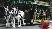 Stanley Park Horse Drawn Tours, Vancouver, Percorsi in carrozza a cavallo