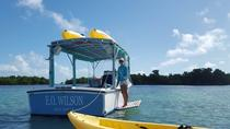 Small Group Kayak and Snorkel Eco Tour, Key West, Kayaking & Canoeing