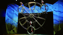 Chinese Acrobatic and Shanghai Evening Tour with Transfer, Shanghai, Full-day Tours