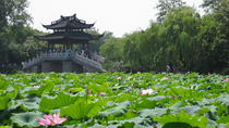 Hangzhou Day Trip from Shanghai, Shanghai, Full-day Tours