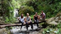 Half Day Hike to Yanachaga National Park, Amazon, Hiking & Camping