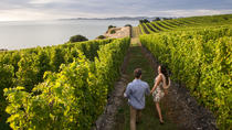 Full-Day Taste the Wines of Marlborough Tour, Blenheim, Wine Tasting & Winery Tours