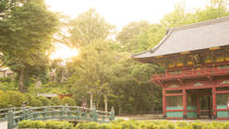 Experience Old and Nostalgic Tokyo: Yanaka Walking Tour, Tokyo
