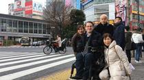 Full-Day Accessible Barrier-Free Tokyo for Wheelchair Users, Tokyo, Food Tours