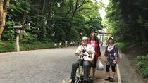 Full-Day Accessible Barrier-Free Tokyo for Wheelchair Users, Tokyo, Bus & Minivan Tours