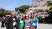 Half-Day Kamakura Walking Tour with Kotokuin (Great Buddha), Kamakura, Day Trips