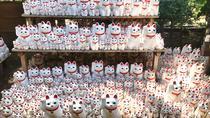 Meet the lucky cats in suburban Tokyo: Gotokuji Walking Tour, Tokyo, City Tours