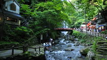Nature Walk at Minoo Park, the Best Nature and Waterfall in Osaka, Osaka, Attraction Tickets
