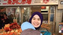 One Day Muslim-Friendly Tour of Sapporo, Sapporo, City Tours