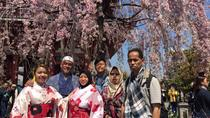 One Day Muslim-Friendly Tour of Tokyo, Tokyo, Custom Private Tours
