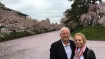 Tour privado de Cherry Blossom en Hirosaki con guía local, Tōhoku