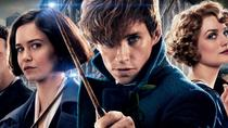 Fantastic NYC Tour inspired by Fantastic Beasts and Where to Find Them and 1920's New York, New ...