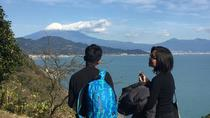 Mt.Fuji and Ocean View Ukiyo-e Walking Tour, Chubu, Half-day Tours