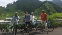 Rental Hybrid Bikes at JR Shizuoka Station (24 gears spots bikes), Hakone, 4WD, ATV & Off-Road Tours