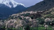 Atlas Mountains and 4 Valleys Private Tour from Marrakech, Marrakech, Day Trips