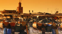 Tour privato: tour di mezza giornata a Marrakech, Marrakech, Tour privati