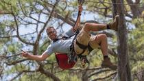 TreeUmph Adventure Course, Sarasota, Obstacle Courses