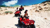 Los Cabos Shore Excursion: ATV Adventure, Los Cabos