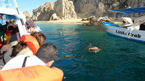 Los Cabos Shore Excursion: Cabo Lands End Experience, Los Cabos, Ports of Call Tours