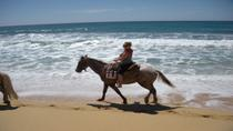 Los Cabos Shore Excursion: Horseback Riding Adventure, Los Cabos