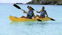 Los Cabos Shore Excursion: Los Cabos Arch Kayak Adventure, Los Cabos, Ports of Call Tours