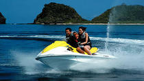 Los Cabos Waverunner Hire, Los Cabos, Dolphin & Whale Watching