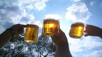 Czech Beer Tasting in Prague, Prague, Beer & Brewery Tours