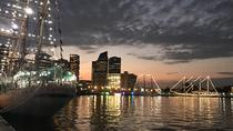 Puerto Madero on Board Dinner and Violin Music, Buenos Aires, Food Tours