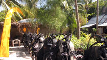 Discover Scuba Diving from Koh Samui, Koh Samui, Scuba Diving