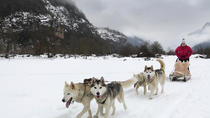 Tena Valley Dog Sledding in The Pyrenees, Aragón, Ski & Snow