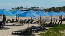Amber Cove - Puerto Plata Shore Excursion: Playa Dorada Beach Day, Puerto Plata, Ports of Call Tours