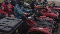 Half-Day ATV and Hiking Tour to Starlight Trail, Newfoundland & Labrador, 4WD, ATV & Off-Road...