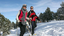 Half-Day Snowshoe and Ice Fishing Trip, Newfoundland & Labrador, Fishing Charters & Tours